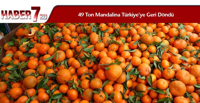 49 Ton Mandalina Türkiye'ye Geri Döndü