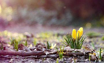 İlkbaharın İlk Gününde Moskova'da Hava Nasıl Olacak?